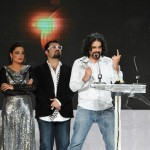 Best Pictures from 11th Lux Style Awards (20)