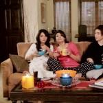 Fariha Pervez Jhoom Ja (2)