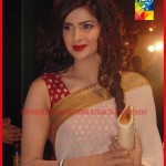 1st Hum TV Awards Pictures - 29