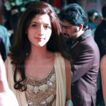 1st Hum TV Awards Redcarpet - 17