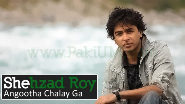 shahzad-roy-election-song