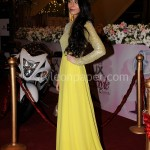 Feeha Jamshed at Lux Style Awards 2013 (Redcarpet)