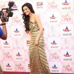 Humaima Malick at Lux Style Awards 2013 (Redcarpet)