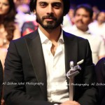 Lux Style Awards 2013 - Picture - 1