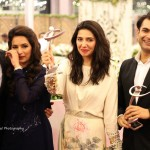Lux Style Awards 2013 - Picture - 11
