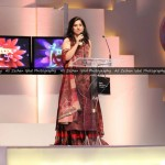 Lux Style Awards 2013 - Picture - 18