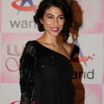 Meesha Shafi at Lux Style Awards 2013 (Redcarpet)