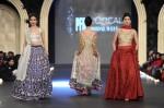 Zara-Shahjahan-pfdc-loreal-paris-bridal-week-2013-day-3 (3)