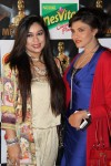 4th-Pakistan-Media-Awards (6)