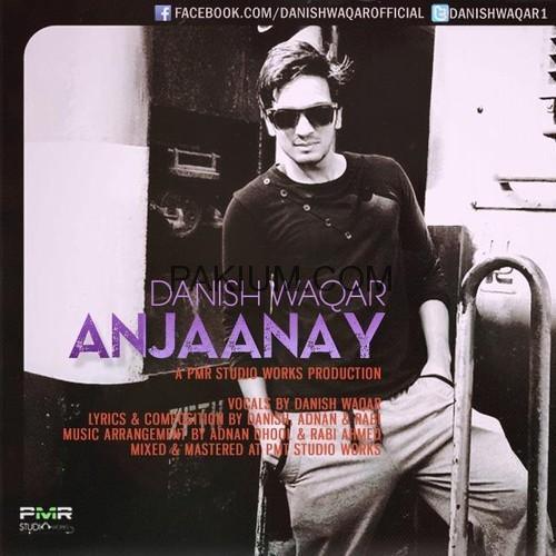 Danish Waqar-Anjaanay