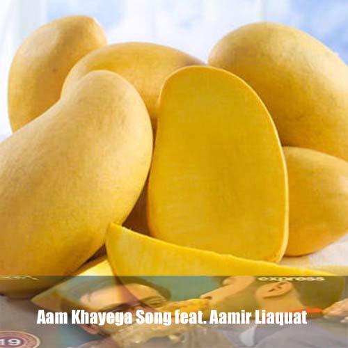 aam-khayega-song-feat-aamir-liaquat