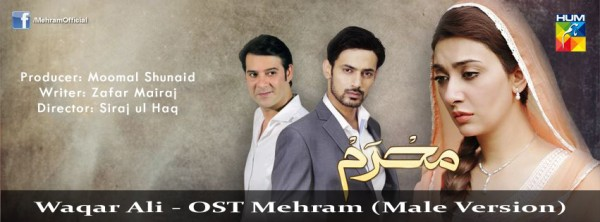 waqar-ali-ost-mehram-male-version