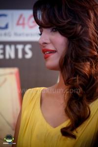 Jalaibee-RedCarpet-Premiere-Karachi (47)