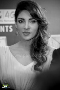 Jalaibee-RedCarpet-Premiere-Karachi (49)
