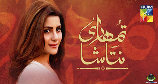 ost-tumhari-natasha-by-basit-ali-and-bushra-bilal