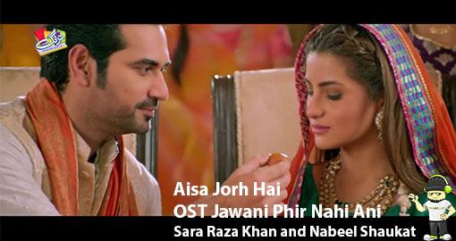 aisa-jorh-hai-ost-jawani-phir-nahi-ani-by-sara-raza-khan-and-nabeel-shaukat-ali