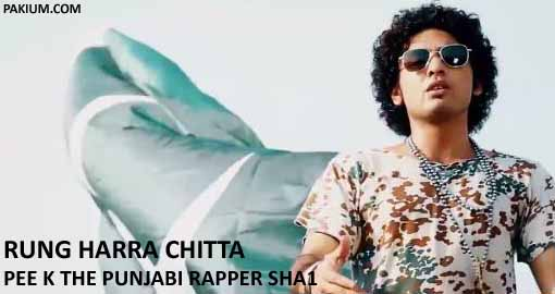 rung-harra-chitta-by-pee-k-the-punjabi-rapper-sha1