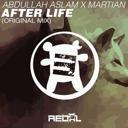 afterlife-by-abdullah-aslam-martian