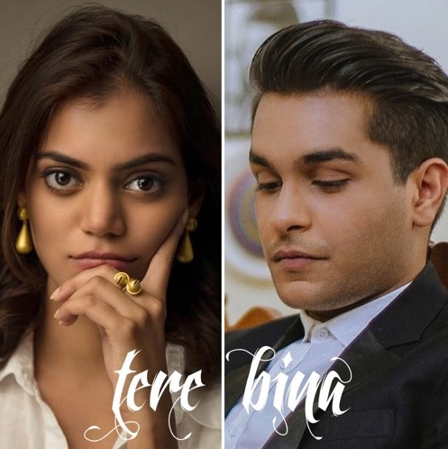 Ost Tere Bina By Asim Azhar Sara Haider Listen Download Mp3